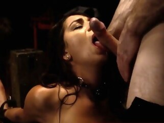 bdsm pornhd big cocks blowjob
